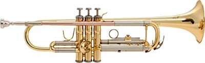 Best Trumpets for Beginners and Students – Hone Your Playing